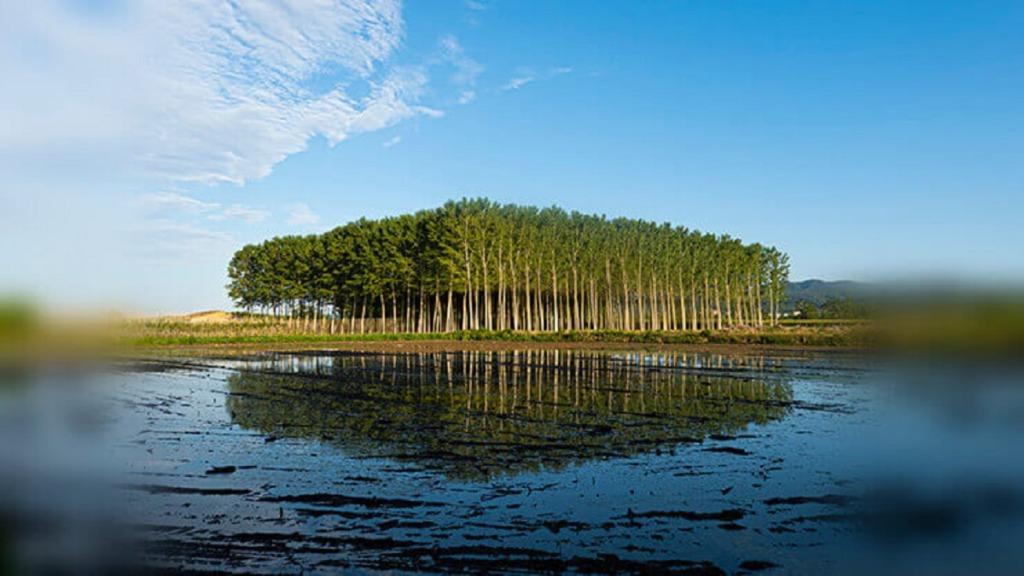 imagen de la vista de un paisaje que tiene una persona con pérdida de visión periférica