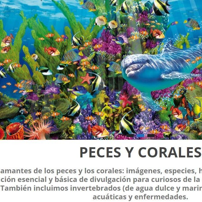 imagen de la página de inicio de Peces y Corales.