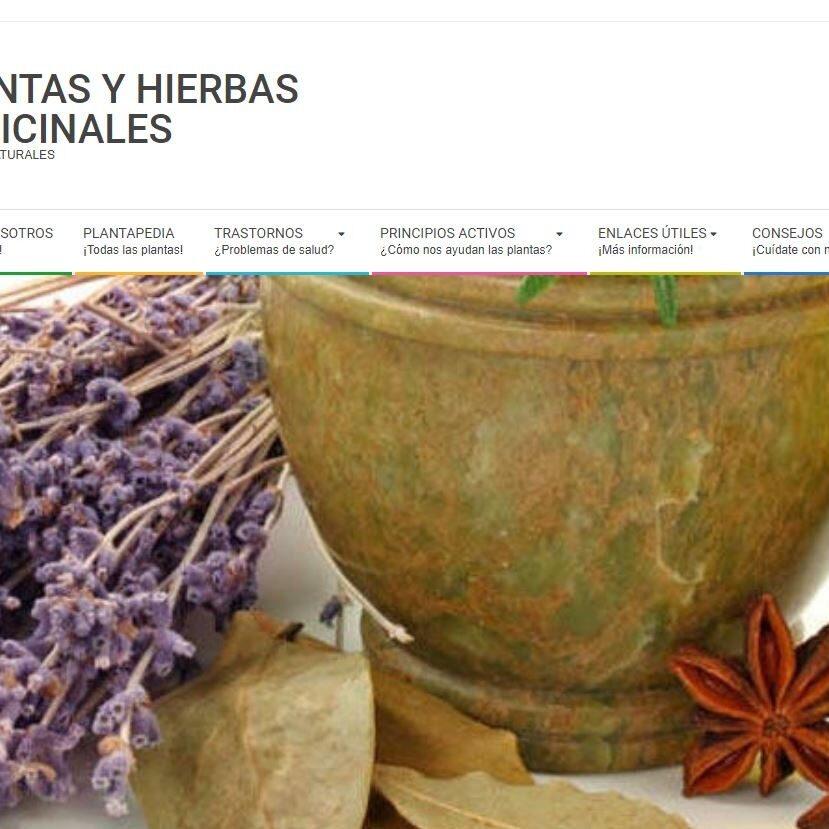 imagen de la página de inicio de Plantas y Hierbas Medicinales.